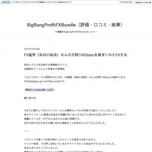 BigBangProfitFXBandle 評価 口コミ