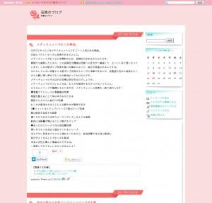 芳恵blog