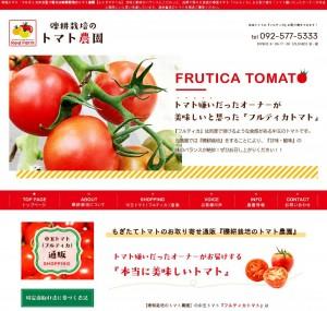 礫耕栽培のトマト農園【レッドファーム】