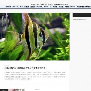 ARUNA(アル―ナ)熱帯魚・クワガタ・カブトムシの情報サイト