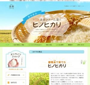 大分県産米ヒノヒカリの通販は【吉良ファーム】