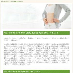 モリンガプロテイン 口コミ 効果 成分 カロリー