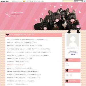 森田誠の犬のしつけ動画